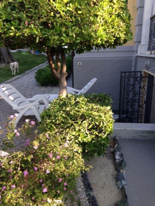 L'ingresso dal giardino