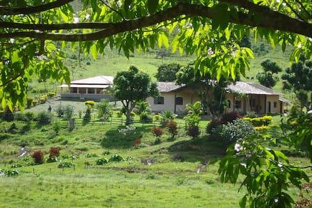 Pousada Fazenda Polyanna - Suites Casal - Mariana