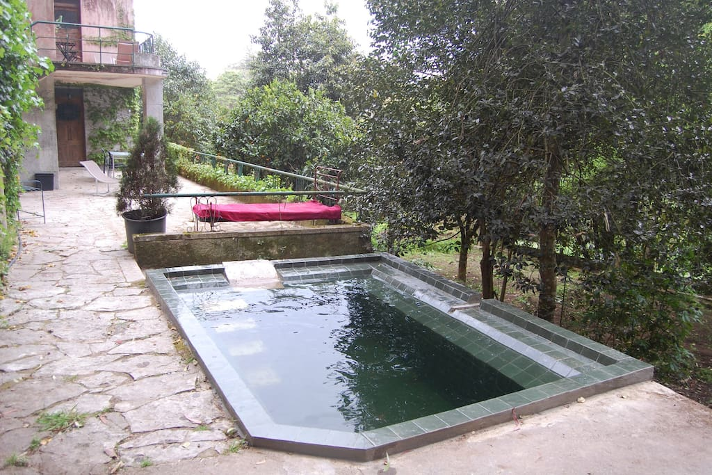 Small swimming pool in front of the door