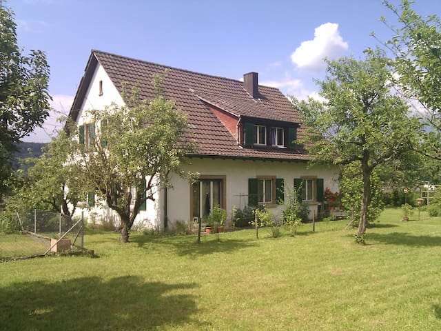 Grosszügige Wohnung mit Garten - Kaiseraugst - Departamento