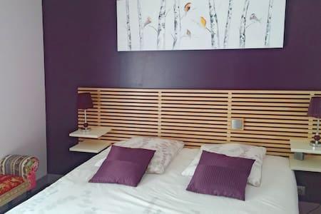 "Charme en ville : chambre ""Les oiseaux"" - Poitiers - Bed & Breakfast"