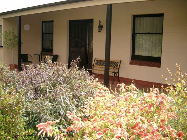 Cotton Palm Cottage - Dernancourt  - Dernancourt - Hus