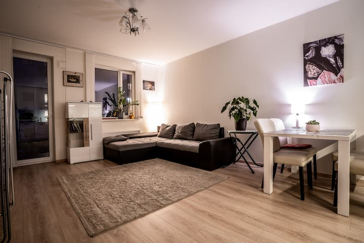 Cozy and Bright 2-Room apartment with free parking