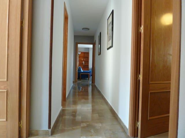 AMPLIO Y LUMINOSO - Granada - Apartamento