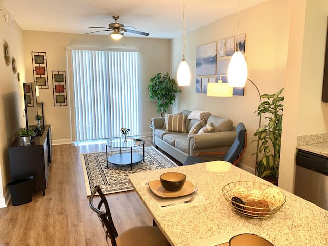 Central Tampa - Modern & Fully Furnished Apartment