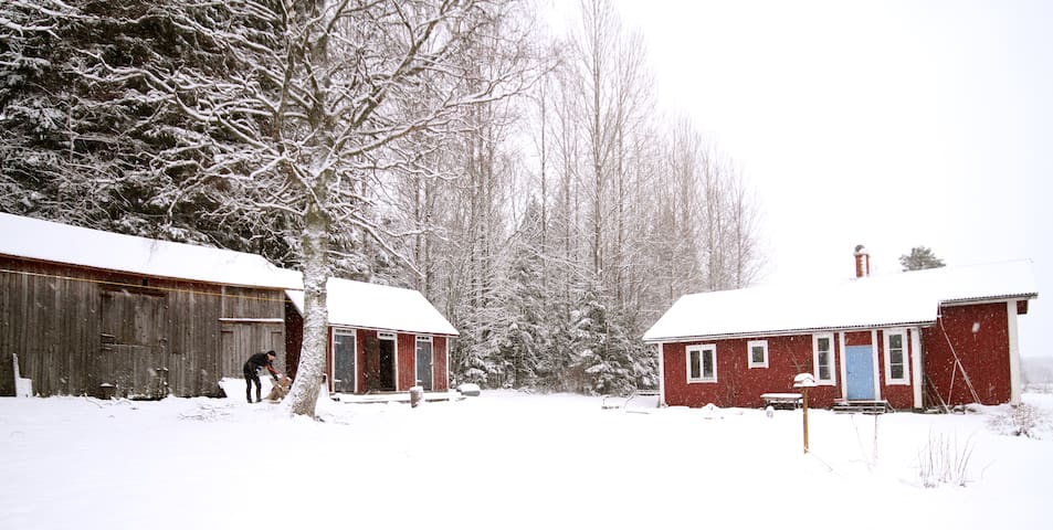 Swedish red house in the forrest - Dals-Ed Municipality - Rumah