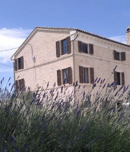 B&B ITALY - MARCHE - near the sea - Province of Fermo - Bed & Breakfast