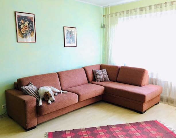 Spacious place, perfect for families or groups