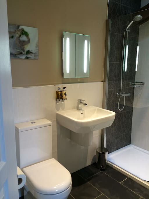 En-suite for Baroque room at The Alpaca - contempory - LARGE shower, elbow room for two