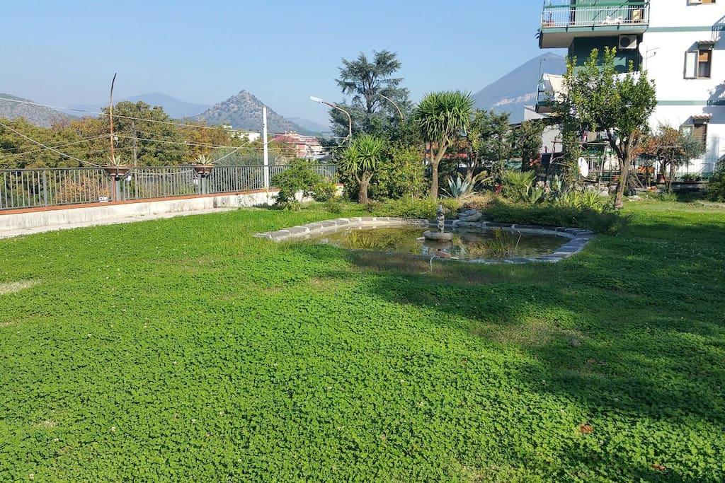 Grande giardino sul quale è possibile fare colazione...