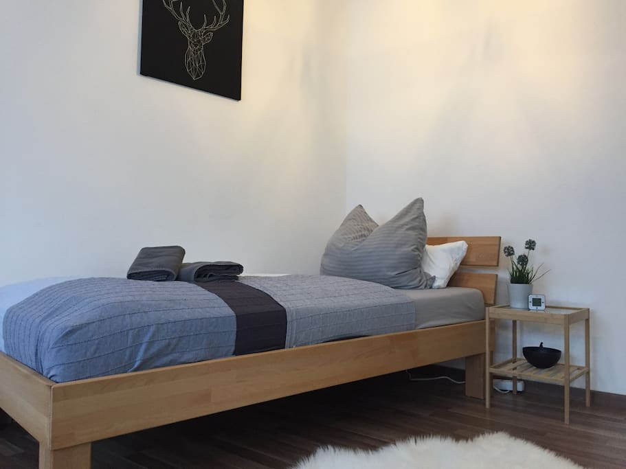 Private bedroom in large apartment apartments for rent for Augsburg apartments for rent