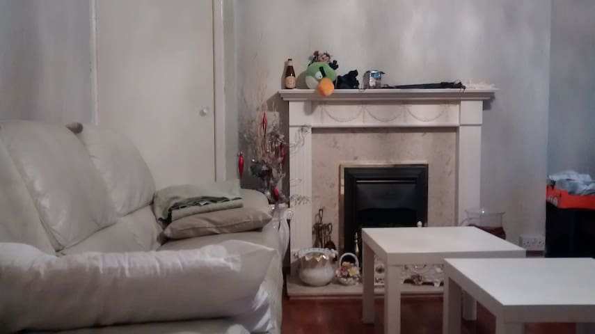 Cheap and nice bedroom in East-Ldn - Londra - Daire