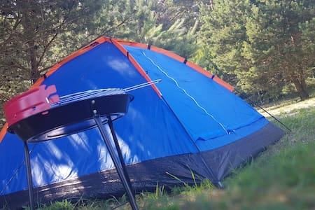 Tent place in camping, bbq, shower, toilet, wifi