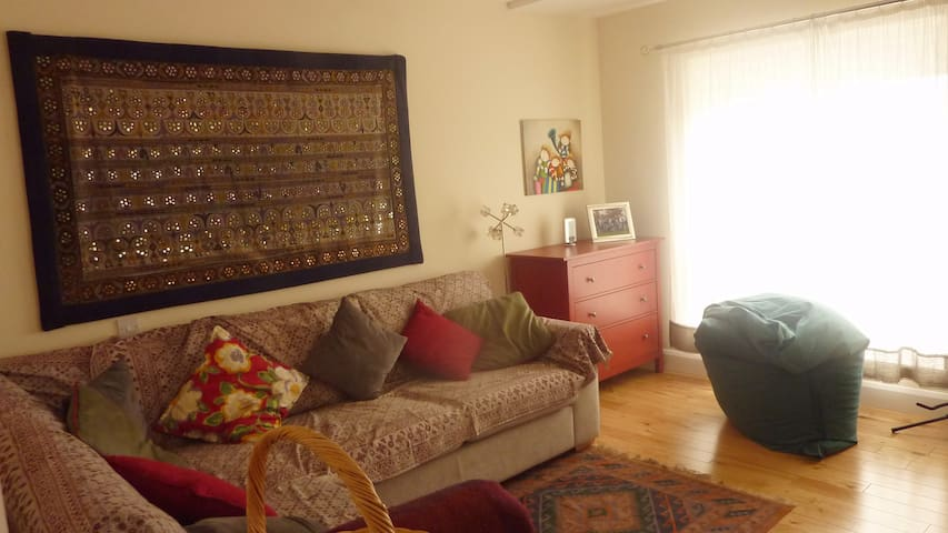 bright and warm living room with comfy sofa bed - Dublin - Huis