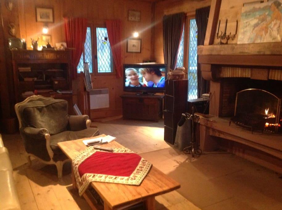 Salon confortable, cheminée et télé ecran plat HD