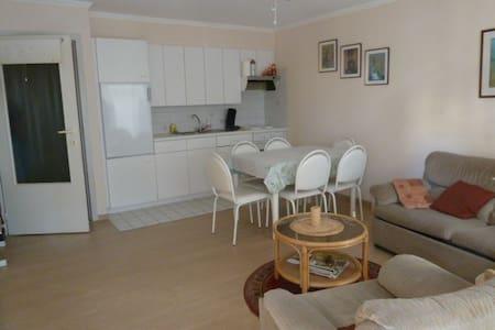 Cosy apartment 20 meters from the beach - De Haan