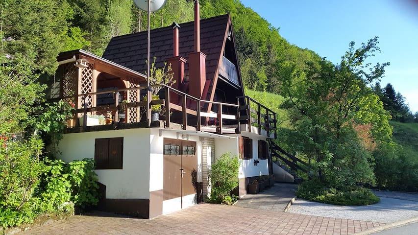Lovely cottage in a green valley - Polhov Gradec - Hytte