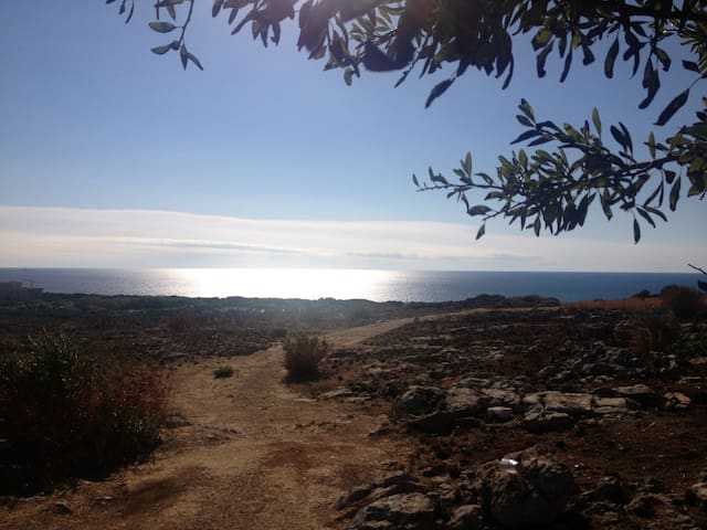 Salento a land to discover - Sannicola - Daire