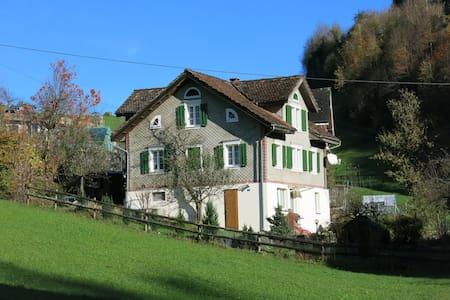 Silbergasse (Zentralschweiz) - Morschach