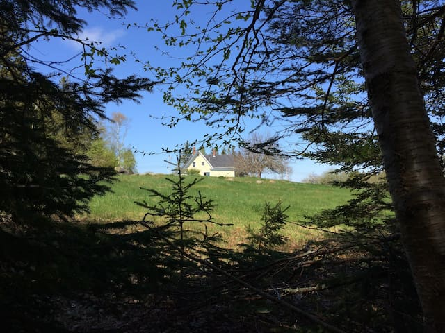 3-Bdrm Yellow House with 500' shore - Deer Isle - House