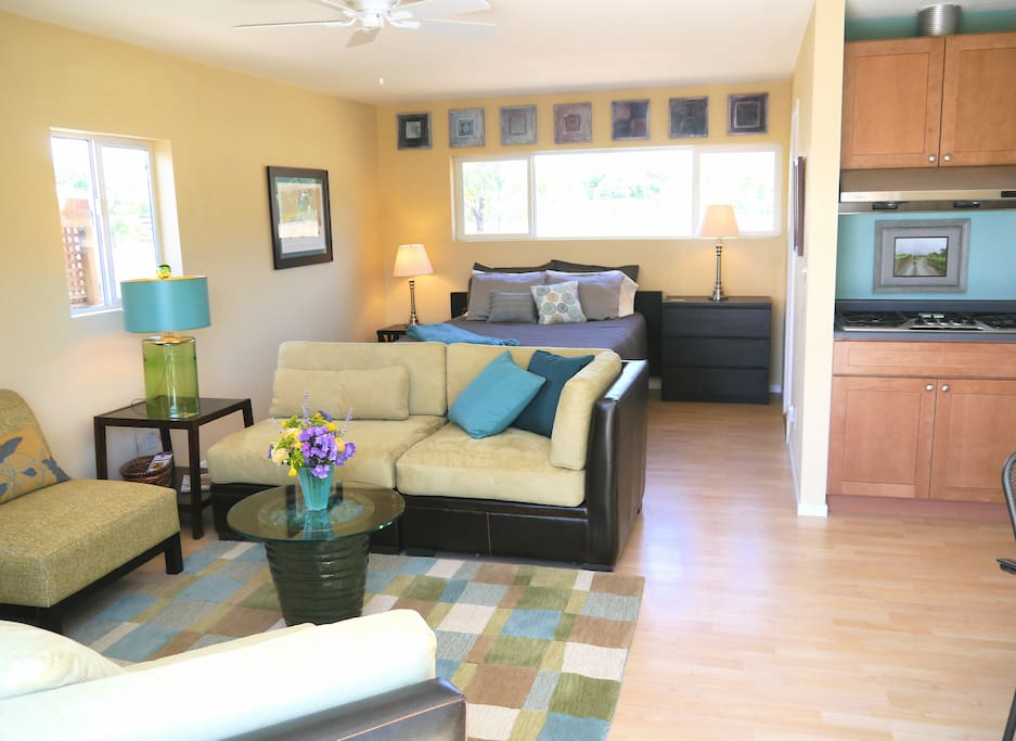 View the vineyard, TV and living area from bed!