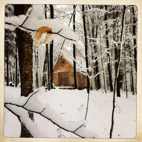 Refuge en forêt, lecture, foyer, silence, rando