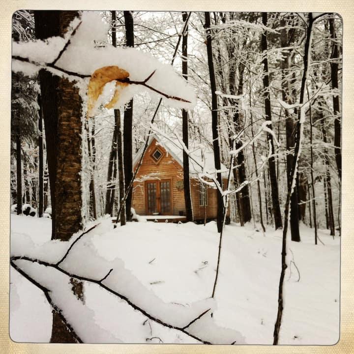 Refuge en forêt, ski de fond, foyer, lecture, paix