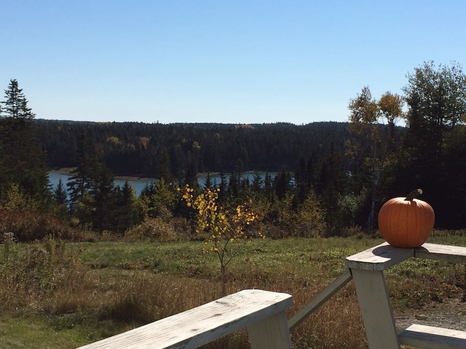 View of Cove from the deck in October.