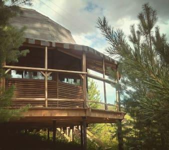 """DoublePine Lodge - купольный дом """"Две сосны"""""""
