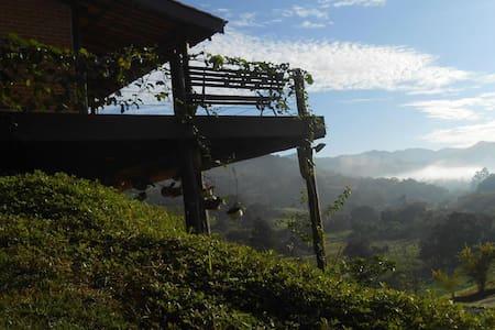 Um quarto dos sonhos na Serra da Mantiqueira - Joanópolis