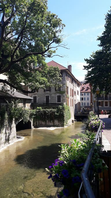Le logement...se situe à côté du square de l'Évêché et des canaux d'Annecy....