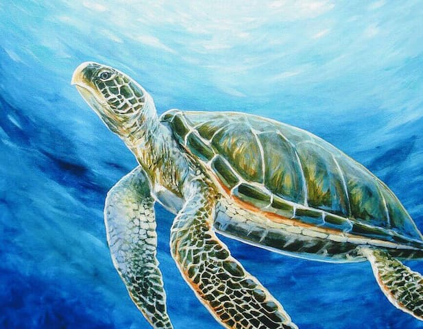 Sea Turtle Bungalow Sara Bay Ringling College Dtwn