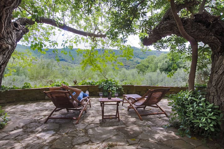 Relax under the mulberry trees