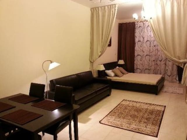 Dubai-Fully furnished studio Sky court Towers.