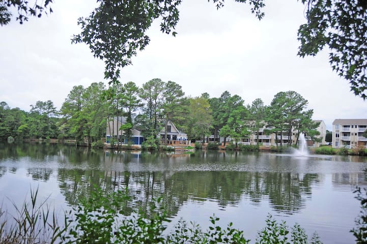 PEACEFUL LAKE VIEW & 7 BLOCKS TO BEACH! - Virginia Beach - Appartement