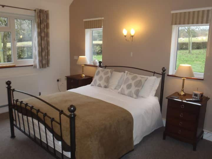 King Room at Bowens Bed and Breakfast