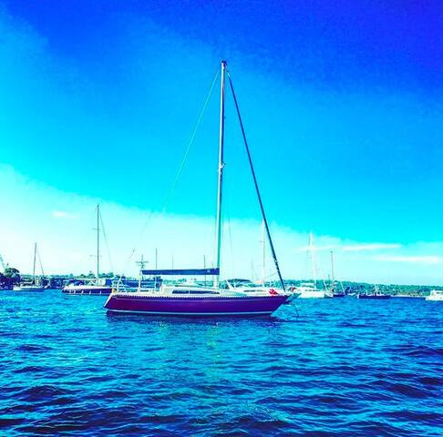 Experience Sailing Yacht Boat - Rushcutters Bay - Лодка