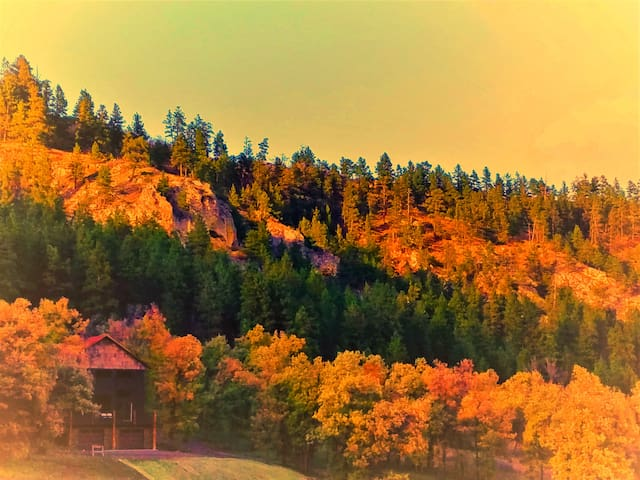 MOUNTAIN HOME 2 MILES FROM SPEARFISH