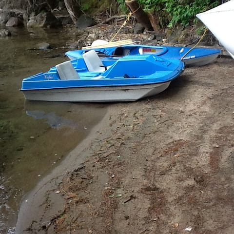 pedal boat supplied
