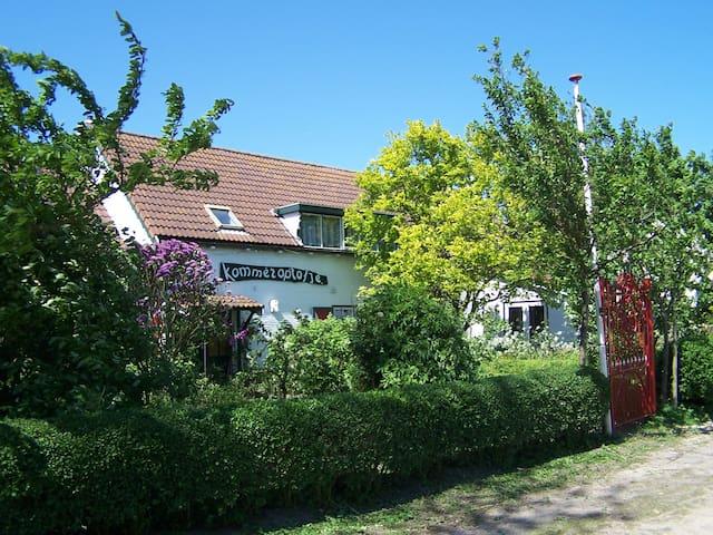 Luxe vakantiewoning in Zeeland, dichtbij strand - Vrouwenpolder