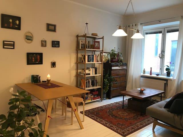 Bright and cozy 41m2 apartment