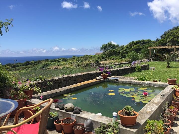 Traumhaus im Paradies 350m zum Meer