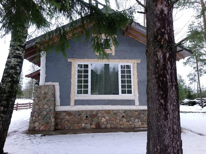 Дом для отдыха с видом на пруд