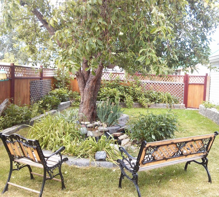 Backyard garden with pond and privacy fence
