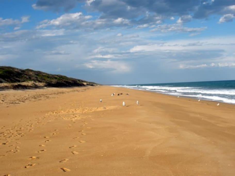 Magnificent 90 Mile Beach