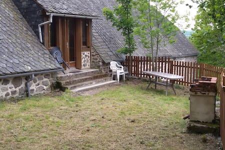 Maison en Lauze ds parc des volcans - Riom-és-Montagnes - Talo