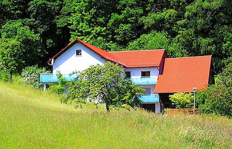 Erholung pur direkt am Waldrand - Wald-Michelbach - Apartment