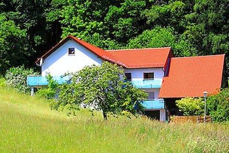 Erholung pur direkt am Waldrand - Wald-Michelbach - Apartemen