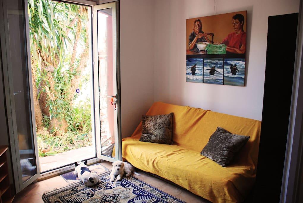 salon / living room / salotto