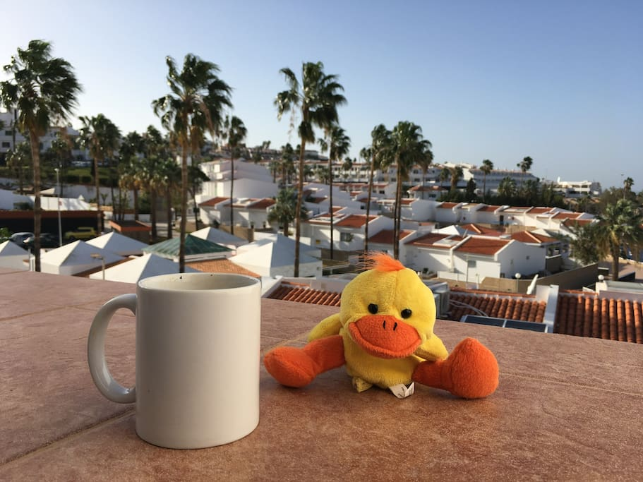 Happy Duck will join you for a morning coffee :)
